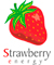 STRAWBERRY TREE – SOLAR CHARGER FOR MOBILE PHONES