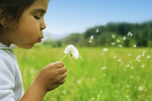 Korporativna društvena odgovornost - vazduh