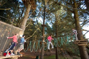 Adrenalin parks - high rope courses