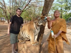 Neka vam tigar jede iz ruke
