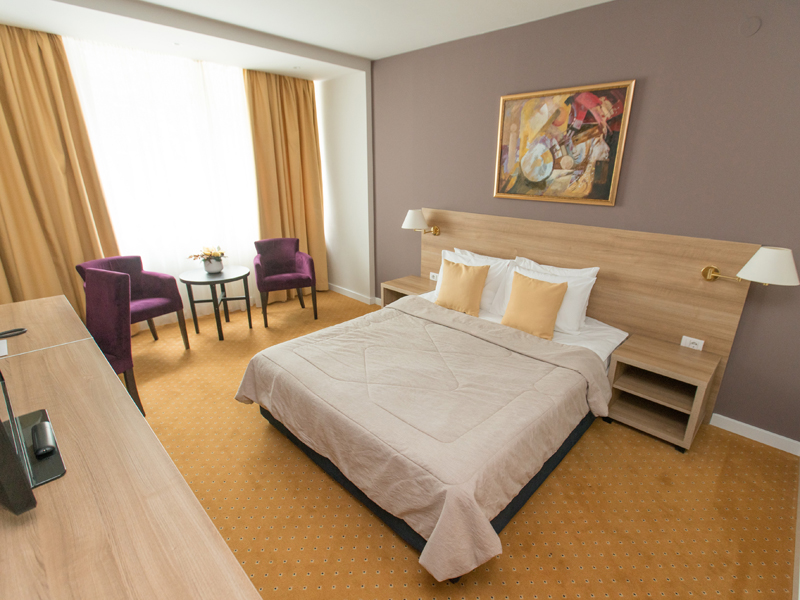 New City Hotel Nis - room