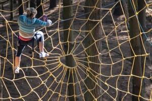 Adrenalin parkovi - prepreke na drveću